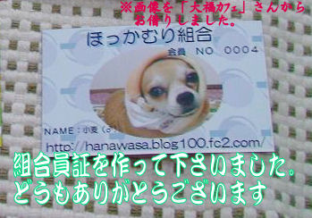 syasin_0906_004