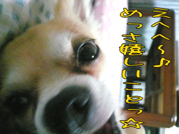 syasin_0913_002