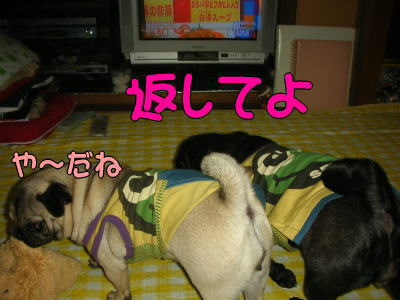20070713145804.jpg