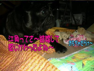 20070727014338.jpg