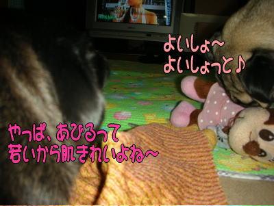 20070727014346.jpg