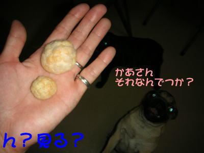 20070811015441.jpg