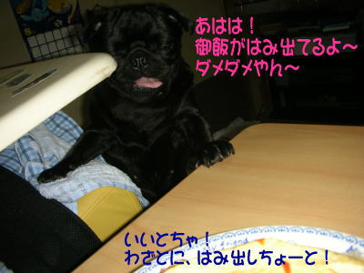 20070811015538.jpg