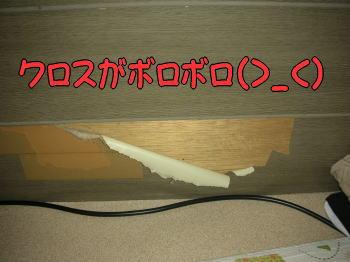20070911225235.jpg
