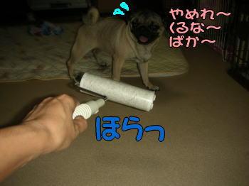 20070914025329.jpg