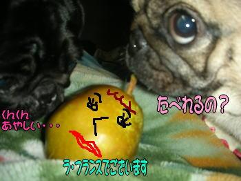 20071118173802.jpg