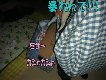 20071121232112.jpg
