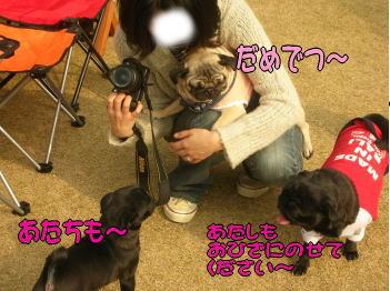 20071206235004.jpg