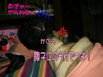 20071208034531.jpg