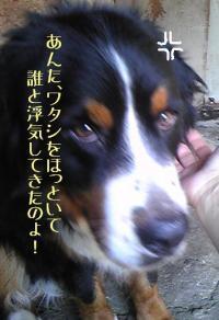 20090626-muku4.jpg