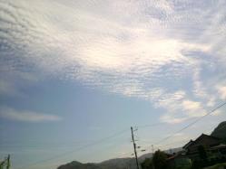 20110908うろこ雲