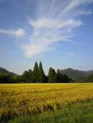20110908青空