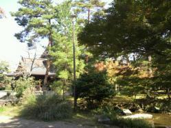 20111028大本さんの紅葉6