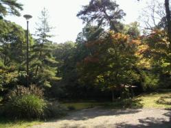 20111028大本さんの紅葉7