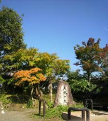 20111028大本さんの紅葉9
