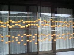 20111101干し柿