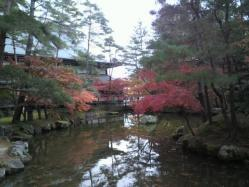 20111130紅葉~♪6
