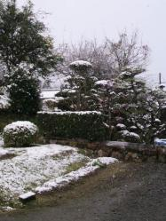 20111217雪2