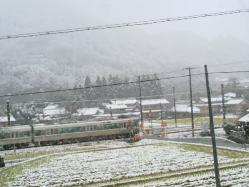 20111217雪3