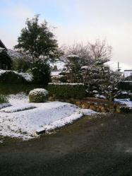 20111223雪2