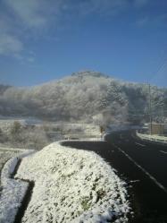 20111224雪3