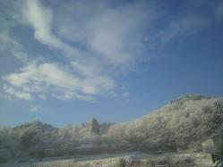 20111224雪4