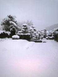 20120124大雪