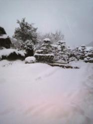 20120126大雪