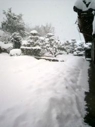20120202大雪2