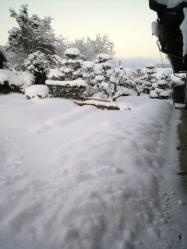 20120203雪
