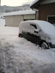20120203雪2