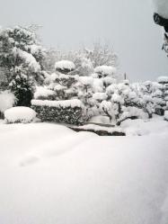 20120218大雪2