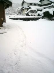 20120218大雪