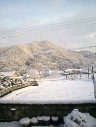 20120228雪化粧