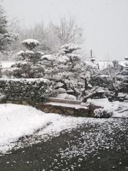 20120312雪~♪2