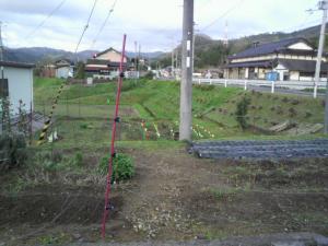20120422畑