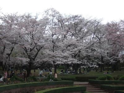 200904広見公園01