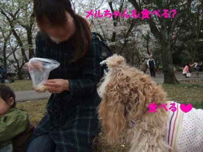200904広見公園09