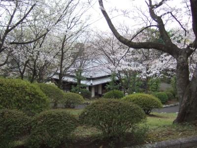 200904広見公園12