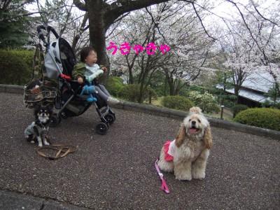 200904広見公園15