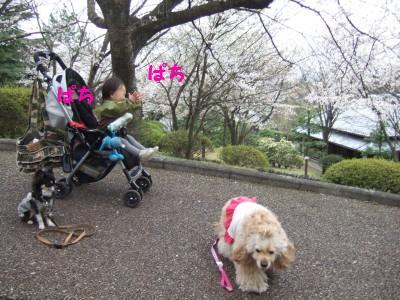 200904広見公園16