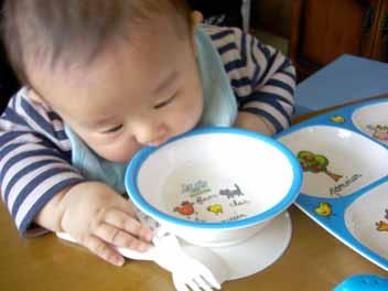お皿なめ2