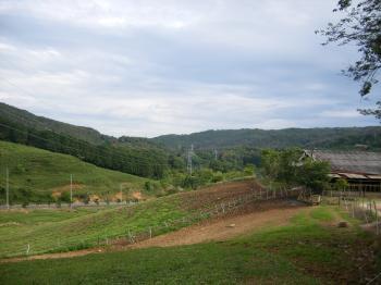 farm16.jpg