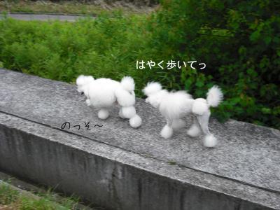 sanpo6_convert_20080623143659.jpg