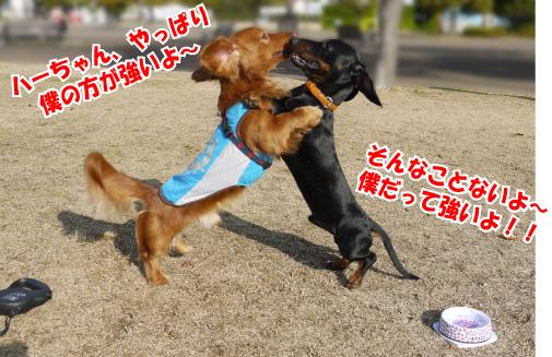 10_20090312004444.jpg