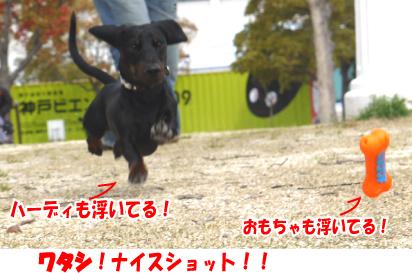 10_20090328224752.jpg