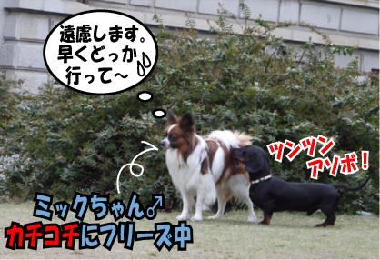 10_20090401114815.jpg