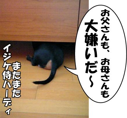 10_20090421234431.jpg