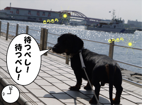 10_20090427134825.jpg