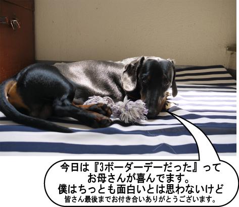 10_20090704144506.jpg